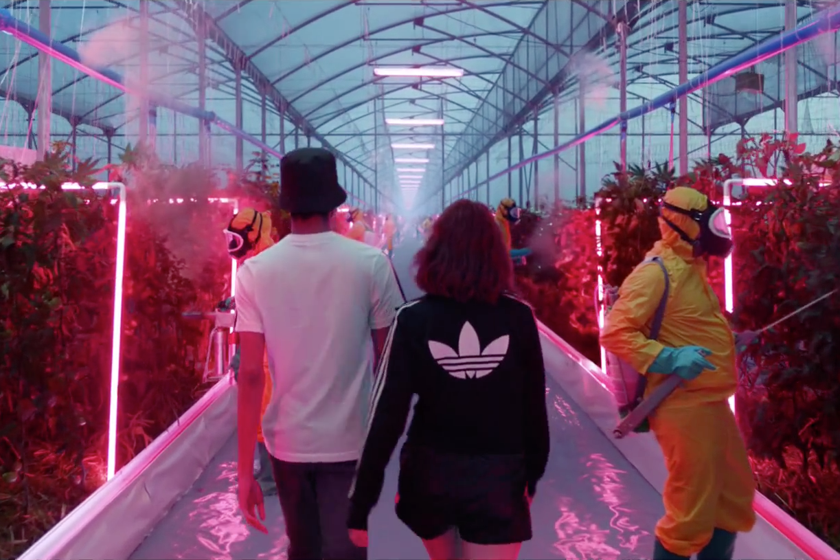 adidas Originals Future Campaign 'your future is not mine'