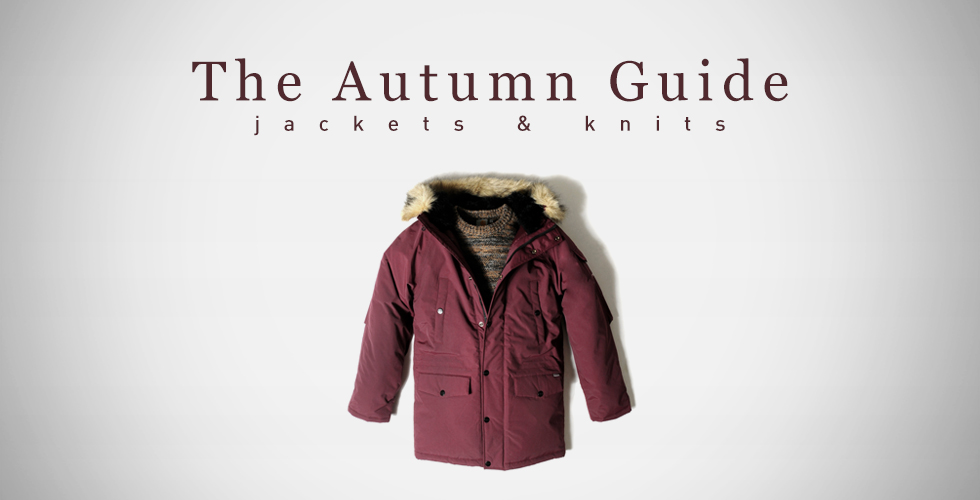 The Autumn Guide